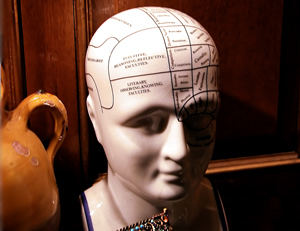 phrenology bust in wood panelled room